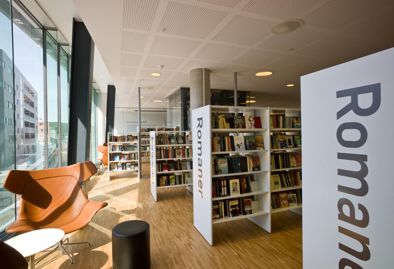 Library Interior Design Images Best Accessories